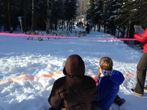 watching the Iditarod start from an urban ski and bike trail